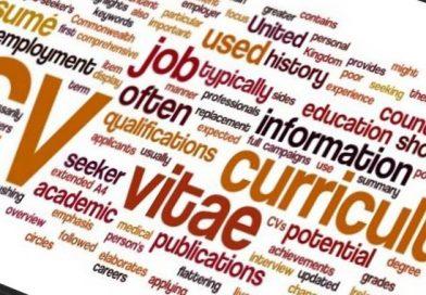 Curriculum vitae europeo, istruzioni per l'uso